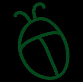grafiksymbol kaefer gruen fuer tiere im wald und am hof