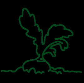grafiksymbol ruebe im boden gruen fuer gemeinschaftsgarten
