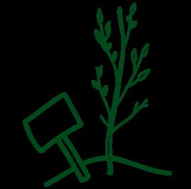 grafiksymbol schild und junger baum gruen fuer biodiversitaet und pflanzen